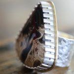 petrified palm wood ring